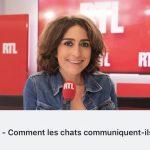 «Comprendre votre chat «sur RTL!