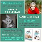 Stage «Chat va bien, merci!» le 23 Octobre dans l'Oise
