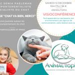 Stage «Chat va bien, merci!» le 12 Décembre en Visioconférence- Organisé par Animautopia